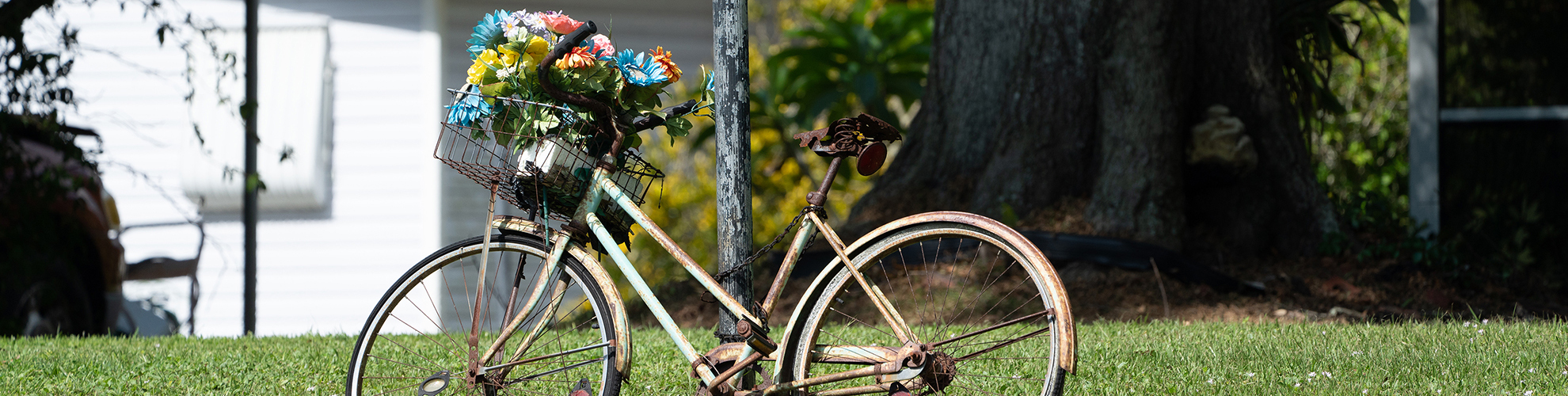 Photo of old bicylce with flowers in basket against a pole